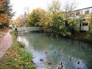 AAPPMA de l'Essonne (91)  : L'Essonne 300px-lafert-alais-essonne-87a10b