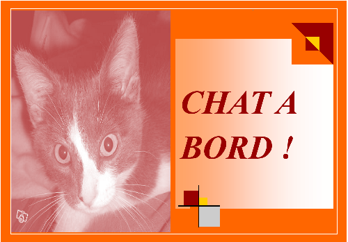 chat-a-bord-dcea31