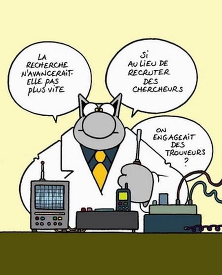 Dessins Du Chat Chez Dom