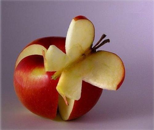 http://img40.xooimage.com/files/b/a/5/florapommepaipillon-13f1255.jpg