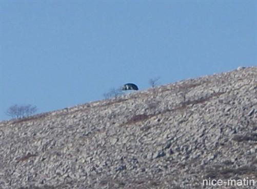 Ovni du Col de Vence  une zone de canulars fréquents - Page 5 Nicematin-e9a5d9